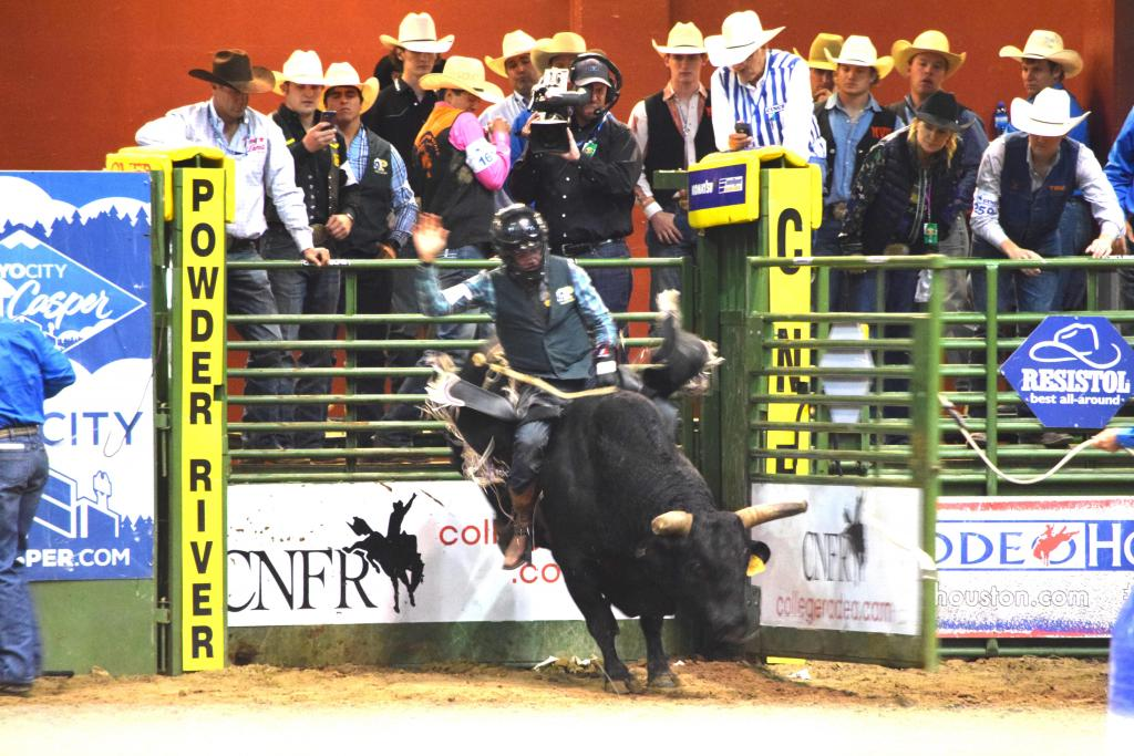 Daylon Swearingen, Bullriding National Championship & Bullriding Rookie of the Year