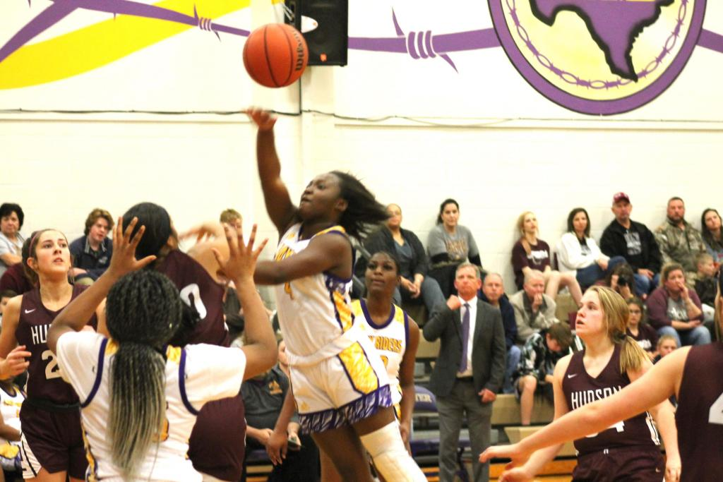 January game action against Hudson/File photo- Shannon James/The Light and Champion