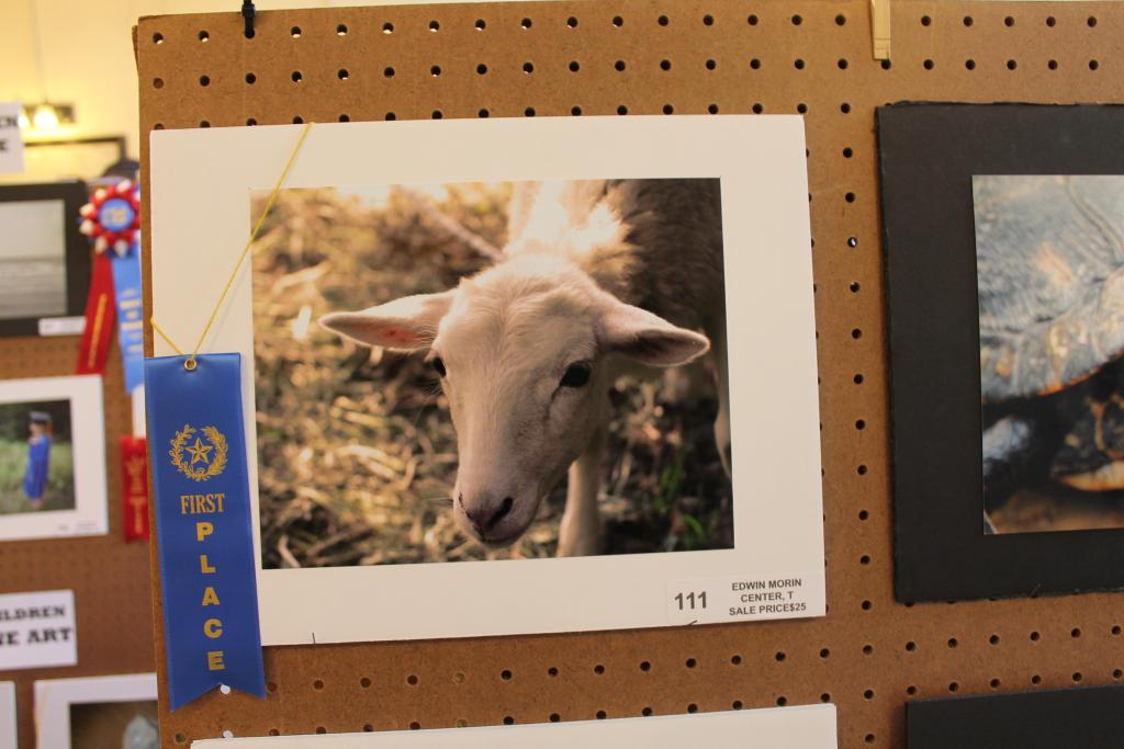 Area shutterbugs have the opportunity to show their best photos at the Poultry Festival Photography Show.